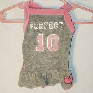 XS American Dog Outfitters Gray Outfit Perfect 10